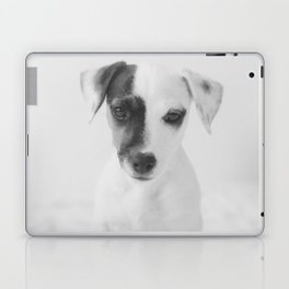 Cute puppy Laptop & iPad Skin