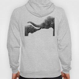Wildlife Collection: Elephant Love Hoody