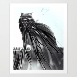 Cat Pine Art Print