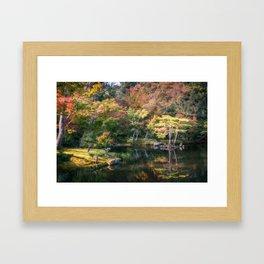 Wonderful colors at the Japanese Zen Garden at Golden Pavilion, Kyoto, Japan. Framed Art Print