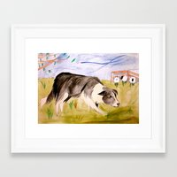 border collie Framed Art Prints featuring Border Collie by Caballos of Colour