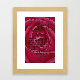 dot rose dot Framed Art Print