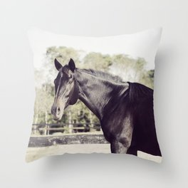 Beautiful in Blac 2 Throw Pillow