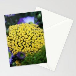 Peeping Sunshine Stationery Cards