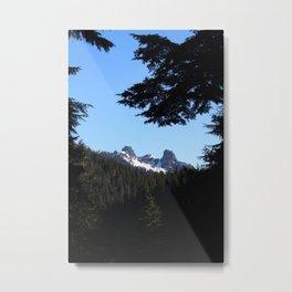The Lions St. Mark's Summit Mount Cypress Metal Print