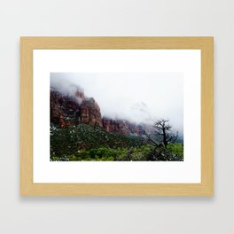 Foggy Tree Framed Art Print