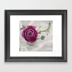 Pink III Framed Art Print
