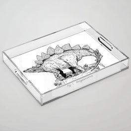 Figure One: Stegosaurus Acrylic Tray