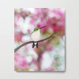 ruby throated hummingbird - female on pink bokeh Metal Print