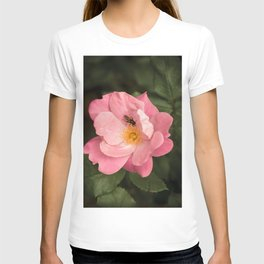 A rose and the fly insect T-shirt