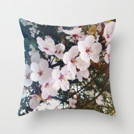 Cherry blossoms sakura Throw Pillow