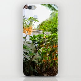 Dreamy Mexican Trumpets iPhone Skin