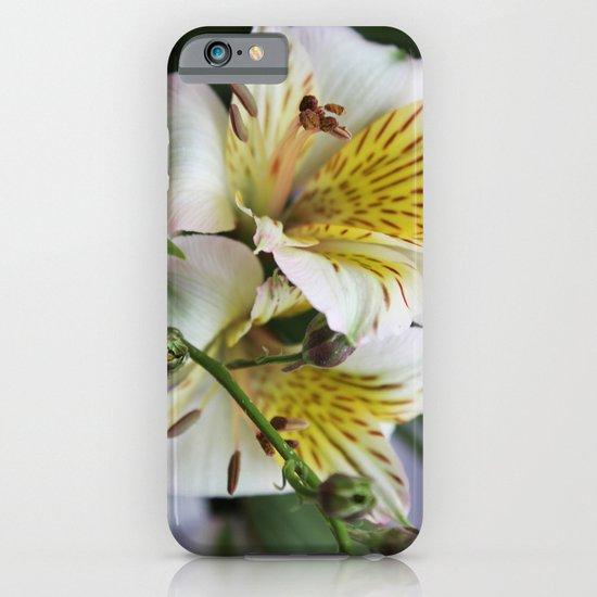 Freesia iPhone & iPod Case