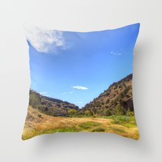 Gila Valley Meadow Throw Pillow