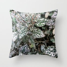 10    Plants Photography   200630   Throw Pillow