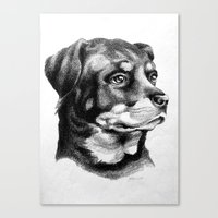 rottweiler Canvas Prints featuring Rottweiler Devotion by Patricia Howitt