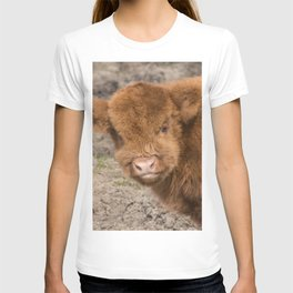 Baby Scottish Highland Coo T-shirt