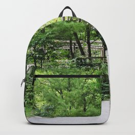 Bridge In The Woods - Heber Downs Conservation Area Backpack