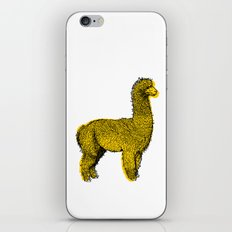 huacaya alpaca iPhone & iPod Skin