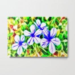 Blue Plumbago flower Metal Print