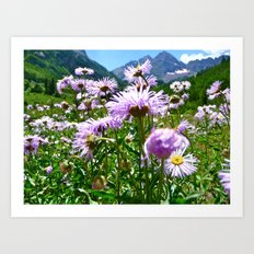Maroon Bells, CO Art Print