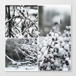 Snow Chills Canvas Print
