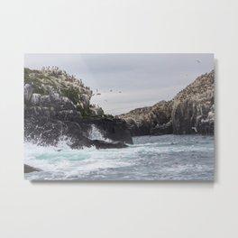 The Farne Islands Cliffs Metal Print