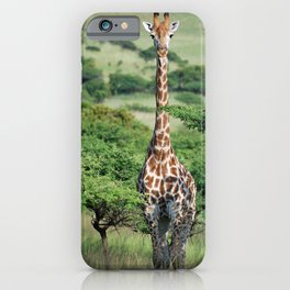 Giraffe Standing tall iPhone Case