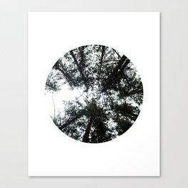 IMAGE: N°42 Circle Canvas Print