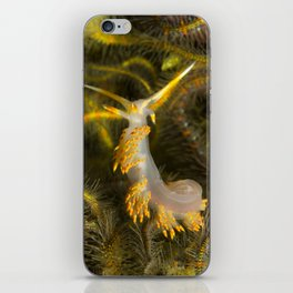Stearns' Aeolid in a Bed of Brittle Stars iPhone Skin