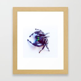 Little Friend Framed Art Print