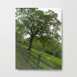 Fairy Glen Metal Print