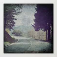 8845 Canvas Print