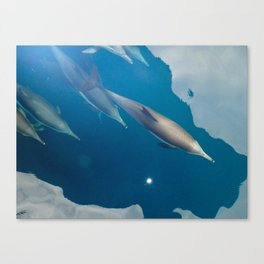 Bowriders Canvas Print