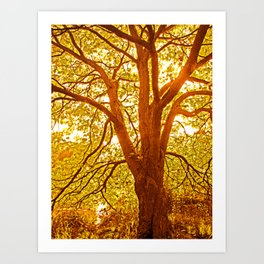 Tree of love and live in golden light Art Print