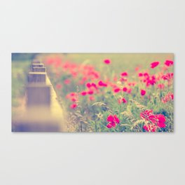 Looking Down the Fence of the Poppy Field. Canvas Print