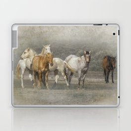 A Band of Horses Laptop & iPad Skin