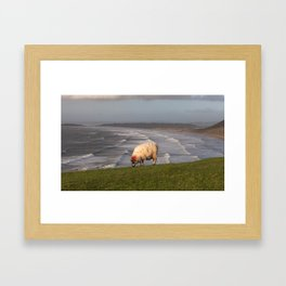 Sheep at Rhossili Bay Framed Art Print
