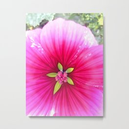 Pink Candy Stripe Flower Metal Print