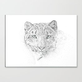 from the blizzard Canvas Print