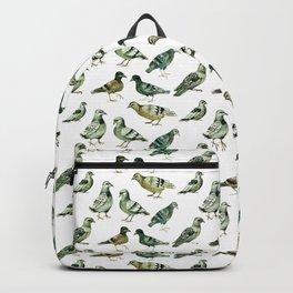 pigeons Backpack
