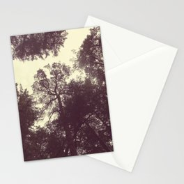 Forest Dreams | Nature Photo Stationery Cards