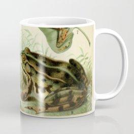 Frogs And Toads Coffee Mug