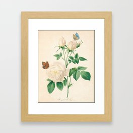 Rose Flower Color Pencil Hand Drawing Framed Art Print