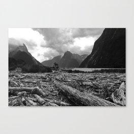 Tree debris, Milford Sound, New Zealand Canvas Print
