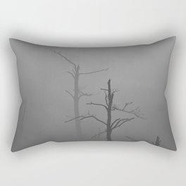 340 | bastrop state park Rectangular Pillow