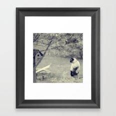 Bird Watcher Framed Art Print