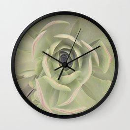 Iceplant  Wall Clock