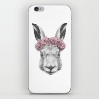 hare iPhone & iPod Skins featuring Hare  by Victoria Novak