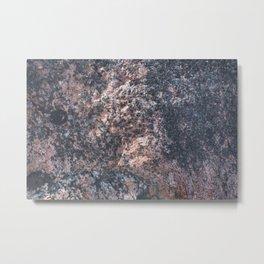 Seashaped Metal Print